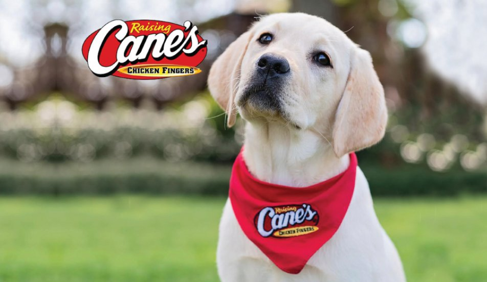 Raising Cane's Free Adoption